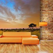 Fototapeta - South African sunset