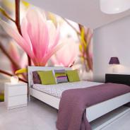 Fototapeta - Kwitnąca magnolia