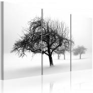 Obraz - Drzewa zanurzone w bieli
