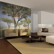 Fototapeta - Drzewa akacjowe - Park Narodowy Serengeti, Afryka