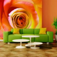Fototapeta - Pustynna róża