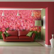 Fototapeta - Wiosenna łąka - świeże różowe tulipany