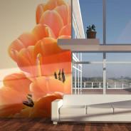 Fototapeta - Pomarańczowe tulipany