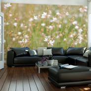 Fototapeta - Białe delikatne kwiatuszki