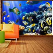 Fototapeta - Podwodna przygoda