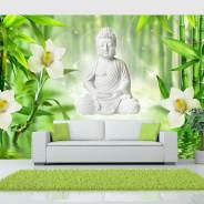 Fototapeta - Budda i natura