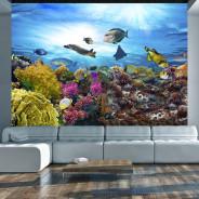 Fototapeta - Rafa koralowa
