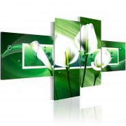 Obraz - Zielone kalie