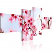 Obraz - Piękno kwiatów wiśni