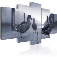Obraz - Kaczki na molo