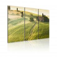 Obraz - Słońce nad Toskanią