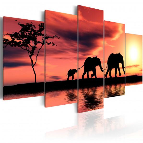 Obraz - Rodzina afrykańskich słoni