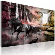 Obraz - Czarny koń przy wodospadzie