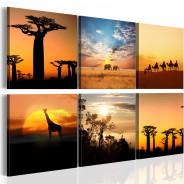 Obraz - Afrykańskie pejzaże