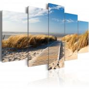 Obraz - Dzika plaża - 5 części