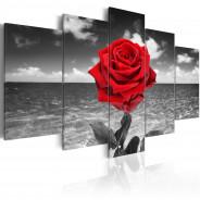 Obraz - Colour of love