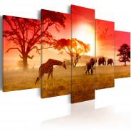 Obraz - Słoneczne kolory Afryki