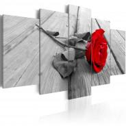 Obraz - Róża na drewnie