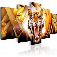 Obraz - Energia tygrysa