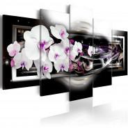 Obraz - Orchidee na czarnym tle