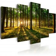 Obraz - Przygoda w lesie