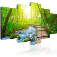Obraz - W słonecznym lesie