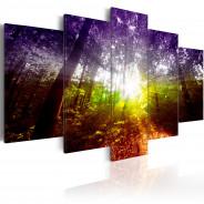 Obraz - Tęczowy las