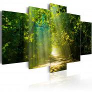 Obraz - Słoneczna droga