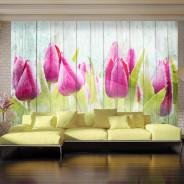 Fototapeta - Tulipany na białym drewnie