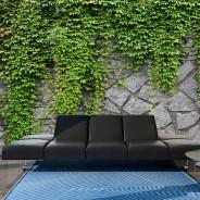 Fototapeta - Zielony mur