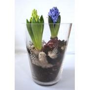 Szklany wazon