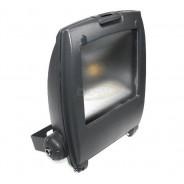 Naświetlacz LED Ralf 10W biały zimny szary