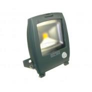 Naświetlacz LED Ralf 20W biały ciepły szary czuj.r