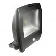 Naświetlacz LED Ralf 50W biały ciepły szary czuj.r
